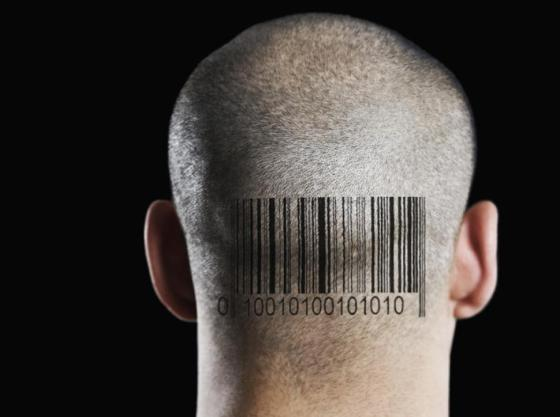 barcode24n-3-web