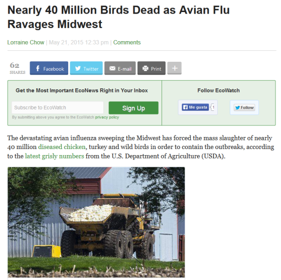 bird flu eeuu