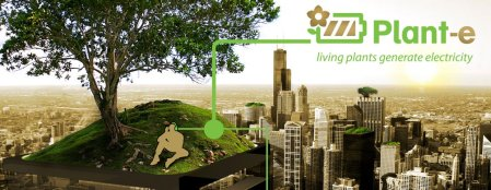 d2076ca6a4-Green Electricity Roof visual 6
