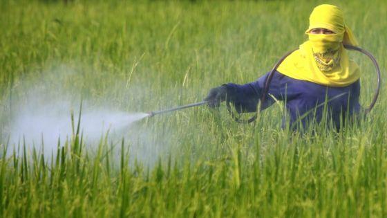 Pesticide_Reuters