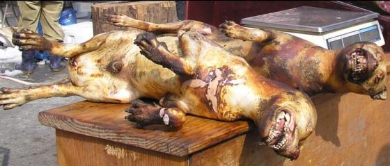 Activistas Piden A Corea Del Sur Que Deje De Servir Carne
