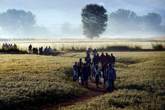 Refugee-475482