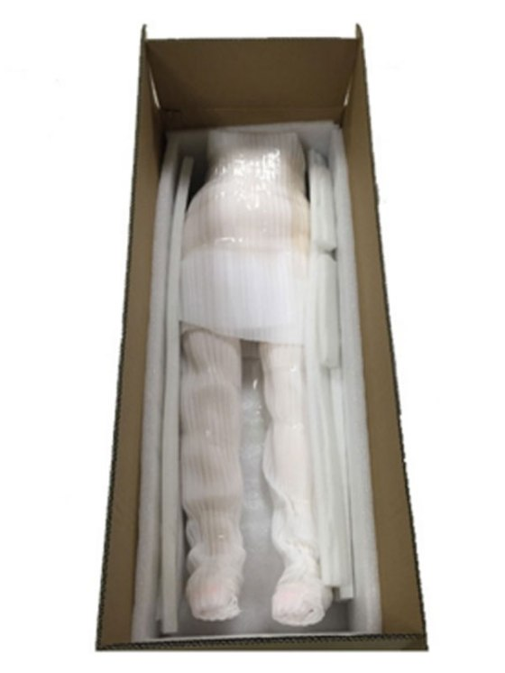 Shocking-tiny-sex-girl-robot-which-looks-like-a-12-year-old-is-on-sale-for-£700-and-delivered-in-a-coffin (1)