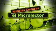 NOTICIAS CURIOSAS