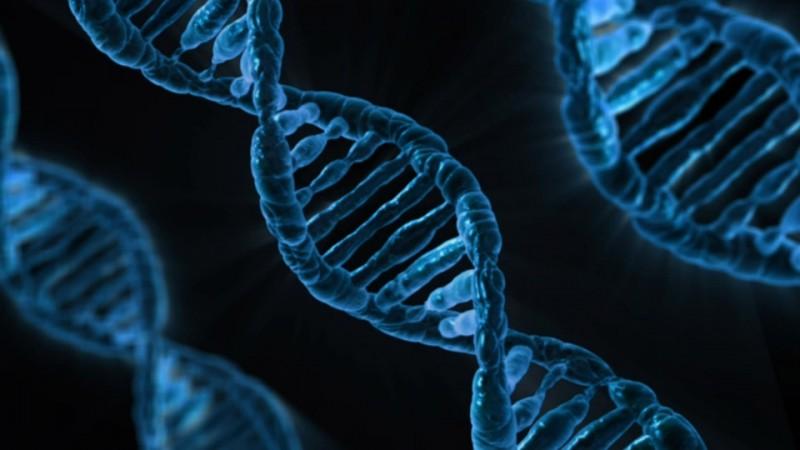 UN BIOHACKER MODIFICA SU PROPIO ADN PARA CONVERTIRSE EN UN SUPERHOMBRE