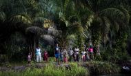CIENTÍFICOS VIAJAN AL CONGO PARA INVESTIGAR UN PELIGROSO VIRUS QUE CAUSAESTRAGOS